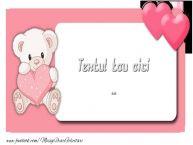 Personalizare felicitari cu text de Valentines Day Valentine
