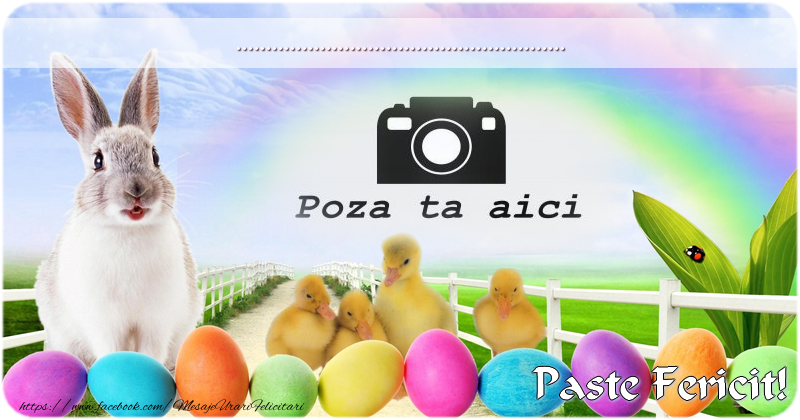 Personalizare felicitari de Pasti   Felicitarea ta de Pasti!