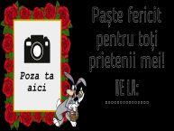 Personalizare felicitari de Pasti | Paște fericit pentru toți prietenii mei! De la: ... - Rama foto