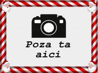 Personalizare felicitari  | Rama foto cu Mos Craciun - Peisaj