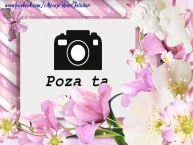 Personalizare felicitari  | Rama foto