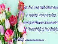 Personalizare felicitari de Sfântul Alexandru | De Ziua Sfantului Alexandru le doresc tuturor celor care își sărbătoresc ziua numelui să fie fericiți și împliniți! ...!