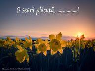 Personalizare felicitari de buna seara | Flori: O seară plăcută, ...!