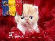 Personalizare felicitari de Dragobete | Te iubesc ...!