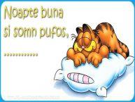 Personalizare felicitari de noapte buna | Noapte buna  si somn pufos,...