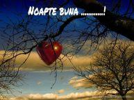 Personalizare felicitari de noapte buna | Noapte buna ...!