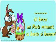 Personalizare felicitari de Pasti | ... iti doresc un Paste minunat, cu liniste si bucurie!