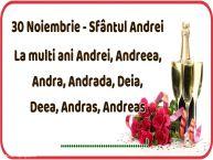 Personalizare felicitari de Sfantul Andrei | 30 Noiembrie - Sfântul Andrei La multi ani Andrei, Andreea, Andra, Andrada, Deia, Deea, Andras, Andreas ...!